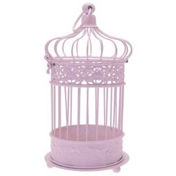 Small Pink Bird Cage