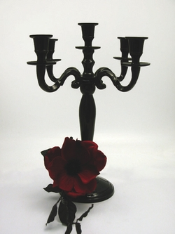 38cm Black Venus Candelabra